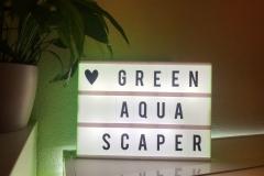 greenaquascaper 12