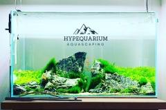hypequarium 10