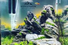 hypequarium 12
