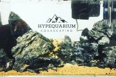 hypequarium 15