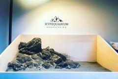 hypequarium 16