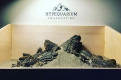 hypequarium 17