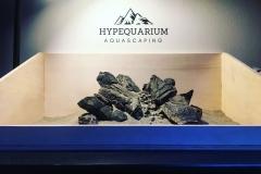 hypequarium 18